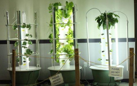 Tower Gardens help grow space-efficient food at PHS
