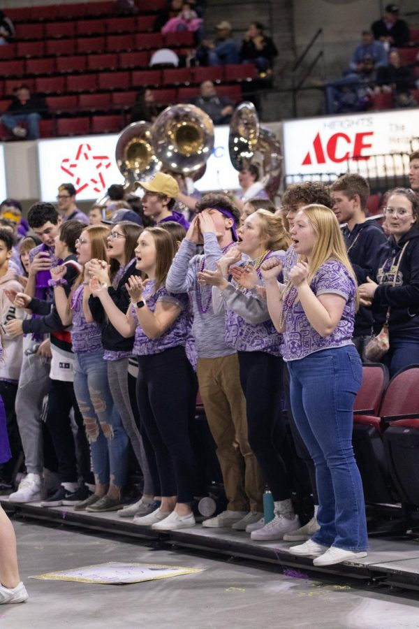 Park High student section cheers at Divisonals on Wednesday afternoon.