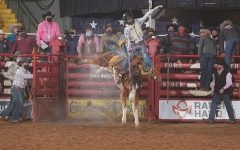 NFR Finalist, Paul O'Hair, competing in Saddle Bronc Riding.